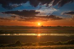 Partialy flooded cultivated land at sunset - stock photo