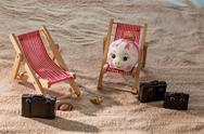 Piggy bank in a deckchair Stock Photos