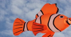 """Clownfish Air Swimmer - """"Finding Nemo"""" Characters Kites Flying on International Stock Footage"""