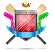 Label for cricket sport club or event. Bright premium design - stock illustration