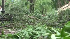 Bike Lane Damage After Tropical Storm Hits Taiwan, Typhoon Soudelor 4K-Dan Stock Footage