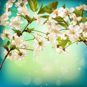 Cherry flower blossom on blue background. EPS 10 Piirros