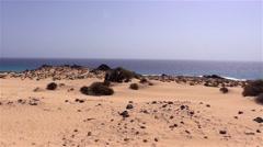 Desert of Fuerteventura in the area Corallejo Stock Footage