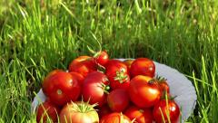 Red tomato in white bowl at the garden outside Stock Footage
