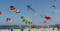 Kites of All Kinds And Shapes on International Kite Festival in Leba, Poland Stock Footage