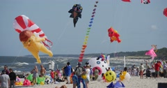 Peoplle Watching a Group of Kites Fly on The International Kite Festival in - stock footage