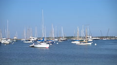 Martha's Vineyard Harbor Stock Footage