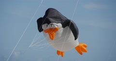A penguin Kite is Flying in The Sky of Leba, Poland During the International Stock Footage