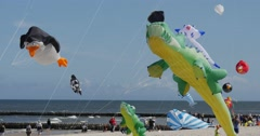 A Penguin Kite, Two Crocodile And Many Other kites in the sky of Leba, Poland Stock Footage