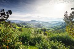 View on Carpathian mountains Stock Photos
