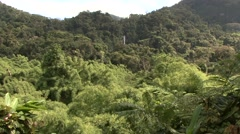 Rainforest waterfall in Madagascar 3 Stock Footage