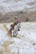 Cowgirl riding horse in snow, Rocky Mountains, Wyoming, USA - stock photo
