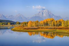 Oxbow Bend, Snake River with Mt Moran and American Aspens (Populus tremuloides), Stock Photos