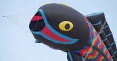 Black Fish And Parachute-like Kites - Kites And Air Swimmers of All Kinds And Stock Footage