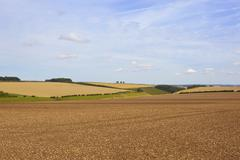 late summer agricultural scenery - stock photo