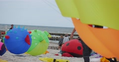 Stock Video Footage of Animals Air Swimmers - People Preparing Their Kites And Air Swimmers or flying