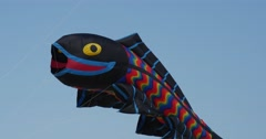 Black fish air swimmer - Kites And Air Swimmers of All Kinds And Shapes on the - stock footage