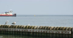 Seagulls Sit On The Breakwater Boat Floats On The Sea Two Men Walk On The Sea Stock Footage
