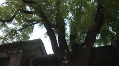Beijing hutongs, old siheyuan house, China Stock Footage