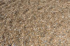 Shingle or stones on a beach washed up by the sea on a bright sunny day - stock photo