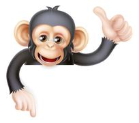 Thumbs Up Monkey Chimp Sign - stock illustration
