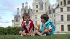 Funny children kids, little boys, eat ice cream on a lawn in the park in fron Stock Footage
