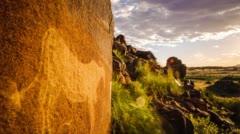 Bushmen engraving Stock Footage