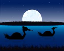 Night landscape with water and bird - stock illustration