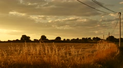 Golden hours sun set south france path electric cables field Stock Footage