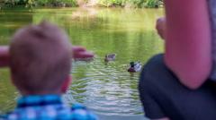 Family watching mallard ducks Stock Footage