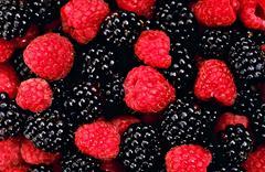 raspberry and blackberry close up - stock photo