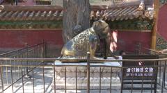 Bronze elephant statue, Forbidden City Stock Footage
