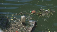 Garbage floating on water surface, water pollution Stock Footage