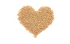 Soybeans, or soya beans, in a heart shape - stock photo