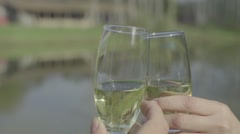 Champagne toast Stock Footage