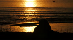 The perfect sunset view from the beach Stock Footage