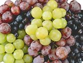 Juicy grapes Stock Photos
