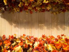 autumn leaves on the wooden background composition - stock photo