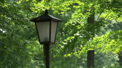 Old lamppost in the English Garden of Munich Stock Footage