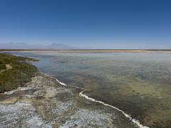 Cejar Lagoon, San Pedro de Atacama, El Loa Province, Antofagasta Region, Chile - stock photo