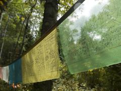 Close-up of prayer flags, Lake Of The Woods, Ontario, Canada - stock photo