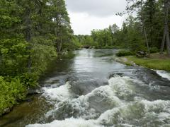River flowing through a forest, Rushing River Provincial Park, Ontario, Canad - stock photo