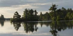 Reflection of trees on water, Lake of the Woods, Ontario, Canada - stock photo
