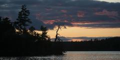 Silhouette of trees at the lakeside, Lake Of The Woods, Ontario, Canada Stock Photos