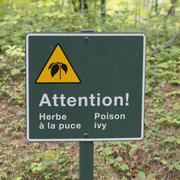 Stock Photo of Poison Ivy warning sign in a forest