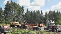 Logging Crane Fitting 3rd and 4th Log On Truck - stock footage
