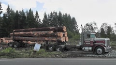 Logging Truck Driver Secures His Load - stock footage