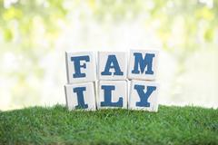 Stock Photo of FAMILY sign made of wooden blocks on a green grass