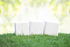 Wooden blocks on a green grass - stock photo