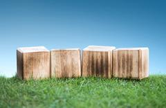 Wooden blocks on a green grass - stock photo